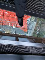 東京タワーの写真・動画_image_734122