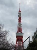 東京タワーの写真・動画_image_734123