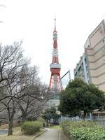 東京タワーの写真・動画_image_734124