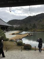 天龍寺の写真・動画_image_734452