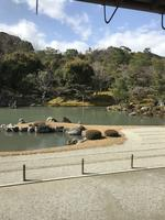 天龍寺の写真・動画_image_734453