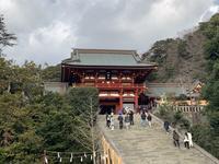 鶴岡八幡宮の写真・動画_image_738108