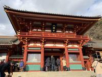 鶴岡八幡宮の写真・動画_image_738109