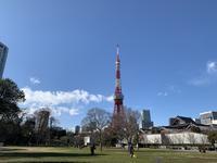 芝公園の写真・動画_image_739713