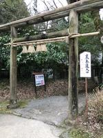 天岩戸神社の写真・動画_image_744713