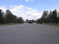 京都御苑の写真・動画_image_744866