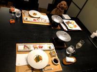 D+KIRISHIMAの写真・動画_image_759666