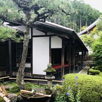 圓光寺の写真・動画_image_784209