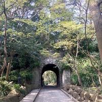 鎌倉文学館の写真・動画_image_788480