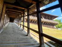 東大寺二月堂の写真・動画_image_788869