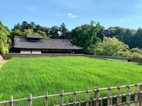 東大寺二月堂の写真・動画_image_788872