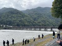 渡月橋の写真・動画_image_831873