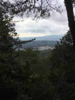 多度山の写真・動画_image_867137