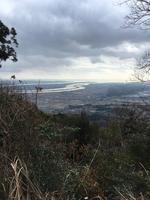 多度山の写真・動画_image_867140
