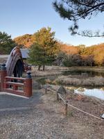 神奈川県立金沢文庫の写真・動画_image_871973