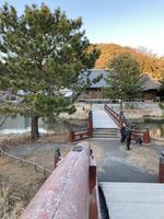 神奈川県立金沢文庫の写真・動画_image_871974