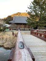 神奈川県立金沢文庫の写真・動画_image_871975