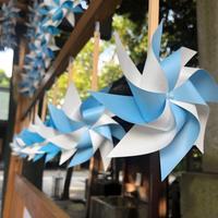 氷川神社の写真・動画_image_938356