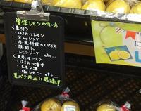 マルヨシセンター 高瀬店の写真・動画_image_36805