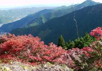 御岳山の写真・動画_image_458085