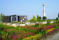 ひまわりの丘公園の写真・動画_image_54390
