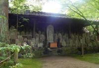 蓮華寺の写真・動画_image_85444