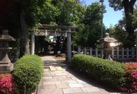 綾戸國中神社の写真・動画_image_136386