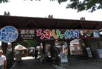 ろまんちっく村の写真・動画_image_139862