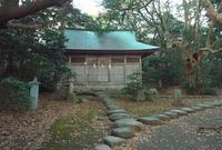 雄島の写真・動画_image_19223