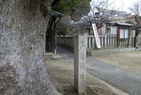 三箇菅原神社の写真・動画_image_34636