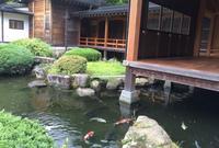 大山阿夫利神社社務局の写真・動画_image_34853