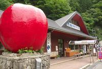 道の駅 はがの写真・動画_image_34933