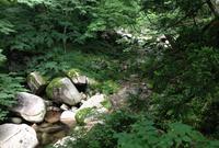 中津ダムの写真・動画_image_35516