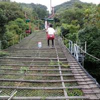 羅漢寺の写真・動画_image_48971