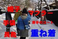 仙北市役所 紙風船館の写真・動画_image_56895