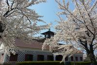 新潟市歴史博物館みなとぴあの写真・動画_image_130114