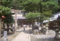 瀧安寺の写真・動画_image_138766