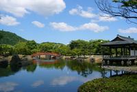 紫式部公園の写真・動画_image_244971