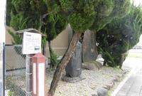 大津宿本陣跡の写真・動画_image_270449