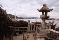 祇園神社の写真・動画_image_484105