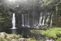 白糸の滝の写真・動画_image_694863