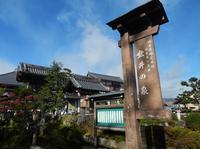 垂井の泉の写真・動画_image_282501