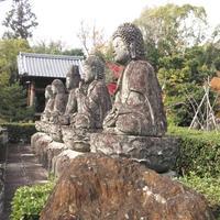 蓮華寺の写真・動画_image_241245