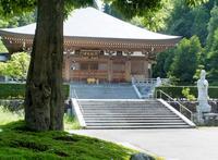 御誕生寺の写真・動画_image_255085