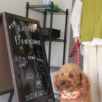 D+KIRISHIMAの写真・動画_image_356903
