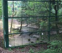 茨城県鳥獣センターの写真・動画_image_30913