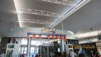 マッカラン国際空港(McCarran International Airport)の写真・動画_image_341746