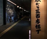 駅から300歩横丁の写真・動画_image_534201