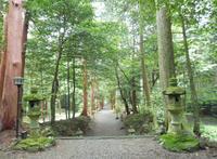 武芸八幡宮の写真・動画_image_78633