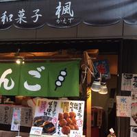 楓の写真・動画_image_173177
